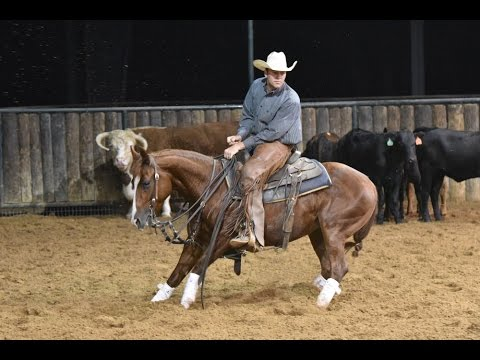Inexorable   2012 Sorrel mare in training with Chris Hanson