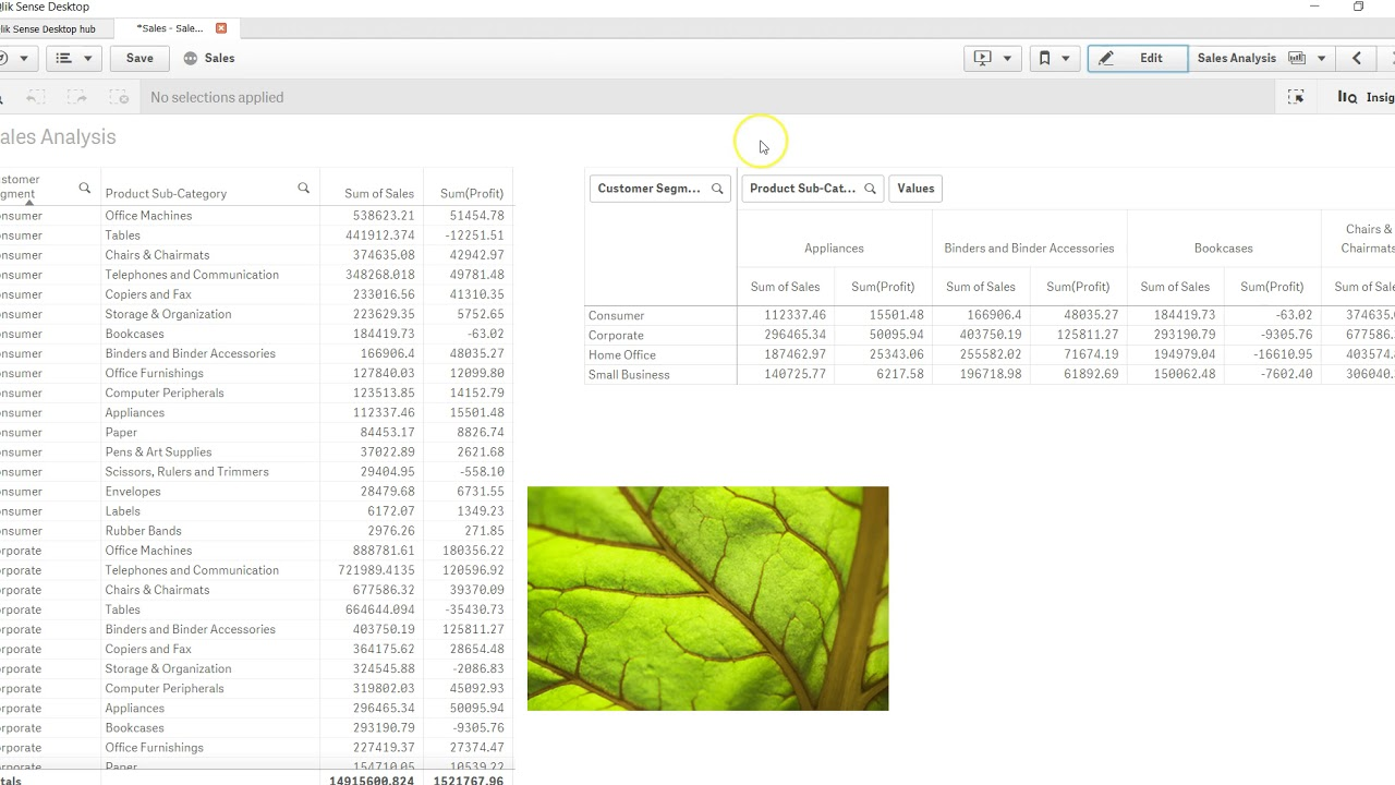 35 How to Add Text or Images in QlikSense