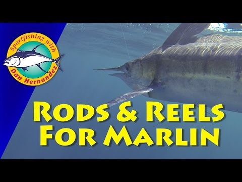 Rods & Reels For Marlin | Best Fishing Tools & Equipments