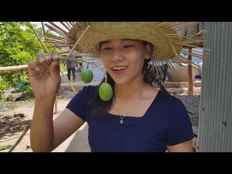 Yummy Creamy Fermented Fish Paste | Brohok Sauce | Cambodia Foods.