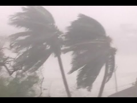 Chennai: Cyclone Vardah makes landfall; trees uprooted, vehicles damaged in many parts