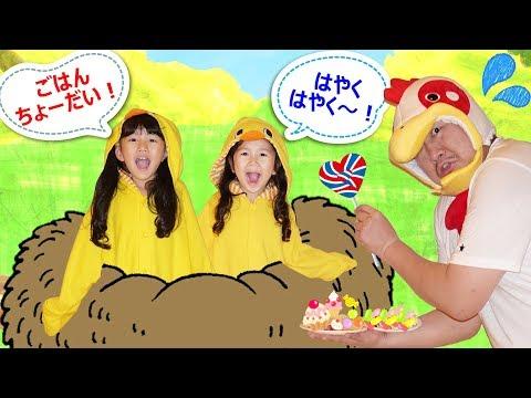 ピヨピヨピヨ☆大変!ひよこがお腹空いちゃった!!鳴く子にごはんをあげましょう!himawari-CH