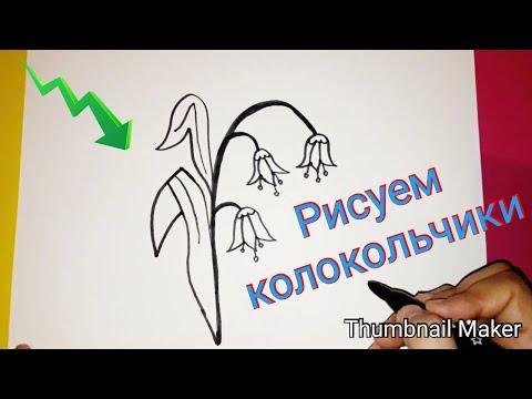 Как нарисовать колокольчики