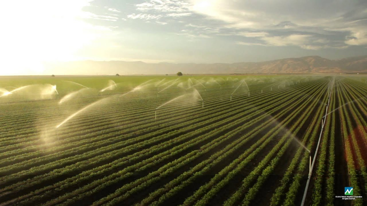 Field Wallpaper Hd The New Nelson Irrigation R2000 Series Sprinkler Youtube