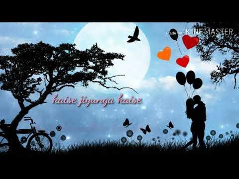 Kaise jiyunga kaise bata de mujhko tere bina song Whatsapp status video