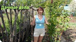 Дачный влог. Высадка томатов в открытый грунт.(Высаживаю рассаду помидоров в открытый грунт. Через 5-7 дней, опрыскиваю томаты марганцовкой, а после полива..., 2016-05-23T11:02:45.000Z)