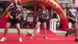 Dog steals show as he throws out his best twerking behind girls performing dance routine
