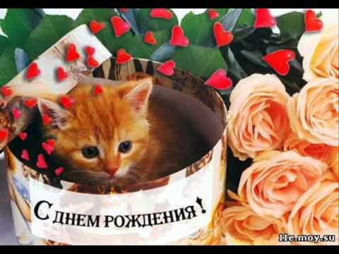 Поздравления с днём рождения котики фото 315