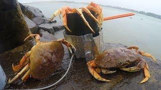 catch-n-boil-crabs-on-a-beach-in-a-rainstorm