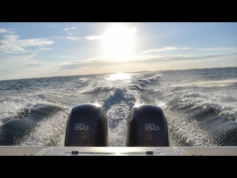 Offshore Fishing In the Gulf Of Mexico