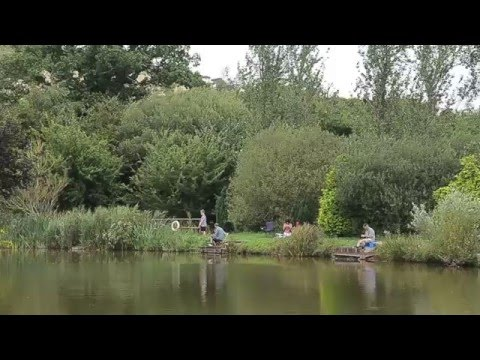 TOWN PARKS FISHERY PAIGNTON, DEVON