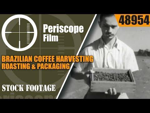 BRAZILIAN COFFEE HARVESTING, ROASTING & PACKAGING HISTORIC FILM 48954