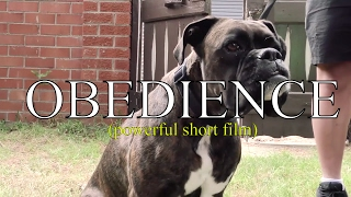 Obedience (emotional short film - you WILL cry)