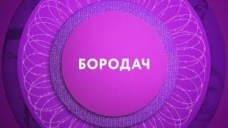 Бородач на ТНТ4!