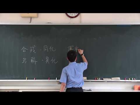 【潘彥宏老師】基礎生物(上) 01 | 第一章生命的特性  第一節生命現象  第二節細胞的構造