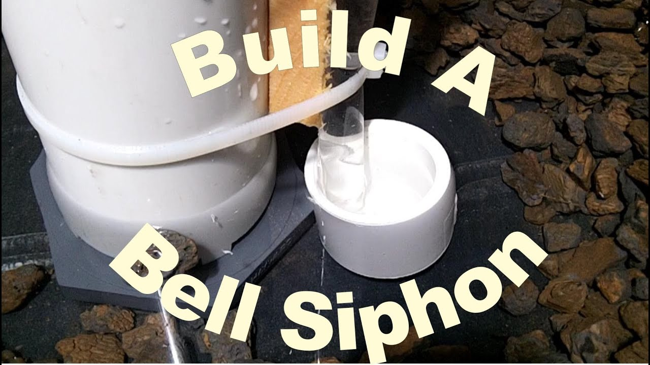 hight resolution of how to build a bell siphon