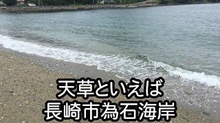 天草は長崎の為石にあります。