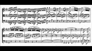 Beethoven - The Complete String Trios