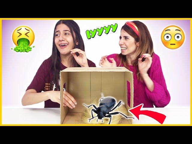 Kutuda Ne Var Challenge Eğlenceli Çocuk Videosu Dila Kent