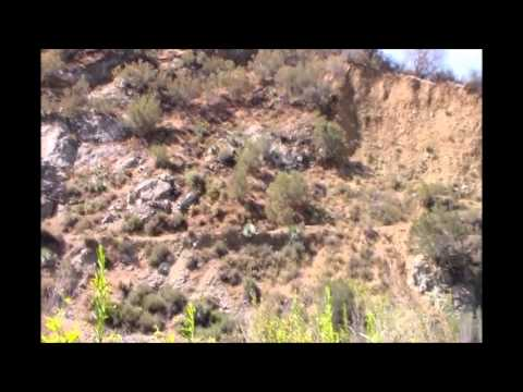 Gold Prospecting 7/10/15 California