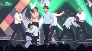 [예능연구소] 방탄소년단 Buttefly @쇼!음악중심_20160514 Butterfly BTS