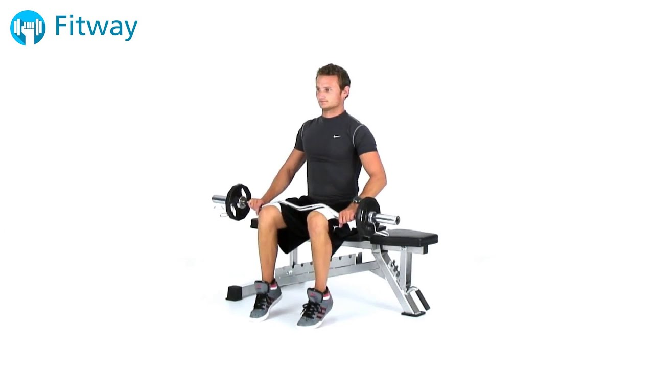 How To Do Ez Curl Bar Calf Raise Seated Leg Workout Exercise