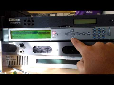 Brute Bisskey CSA V1 | FunnyDog TV