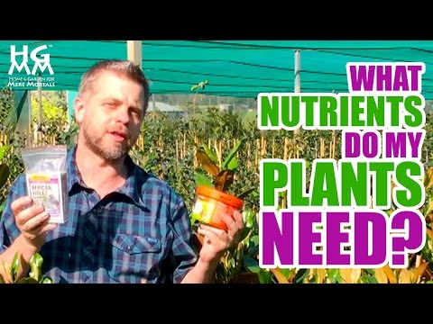 What are those N•P•K numbers on plant food and fertilizer?