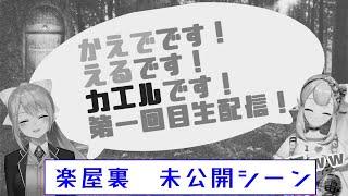 【🐸未公開映像】生配信直前雑談【井戸端会議】