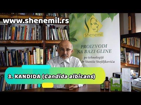 3. KANDIDA (Candida albicans) - Ekologija organizma sa Prof. dr Stanišom Stojiljković