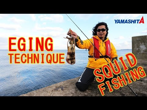 "YAMASHITA ""How to catch SQUID"" explained.SQUID Fishing  (EGING) from shore,Jetty"