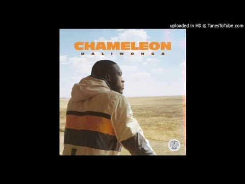 DALIWONGA CHAMELEON FULL ALBUM MIX - by dr thabs