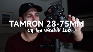 Tamron 28-75mm F2.8 on the Weebill Lab with A7iii