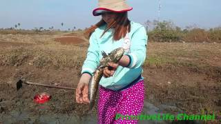 Beautiful Girl catch fish By hand at Pond | Fishing Videos in Seim Reap | 釣魚視頻 2017