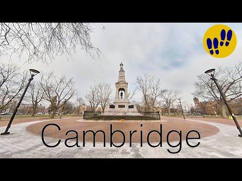 Foggy Morning in Cambridge, MA - Harvard Square - Walking tour of Boston HD