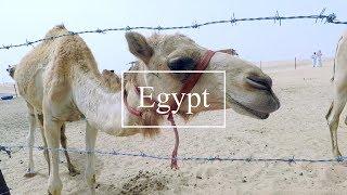 EGYPT x ABU DHABI | Travel Video