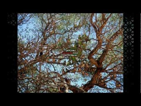Spielzeugmann Video von Unheilig (2008/2011)
