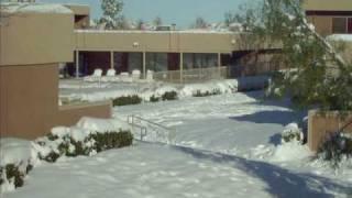 Snow Day  12- 17-2008 0002