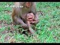 Baby Danita Cry Teresa Grandma Briget Take Care
