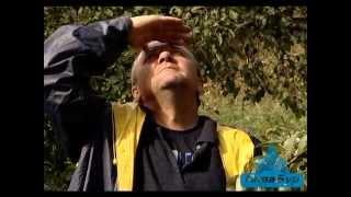 видео скважины на воду