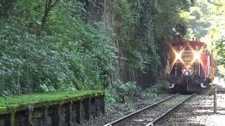 嵯峨野トロッコ列車 鉄道むすめ(嵯峨ほづき、黒潮しらら、城崎このり)ヘッドマーク装着!