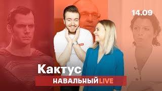 🌵 О Солсберецкой истории, политическим мотивам увольнений и комиксах