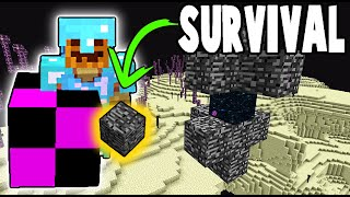 Bedrock Block Item Farm in SURVIVAL! | ProtoTech SMP #129
