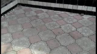 видео Чем отмыть тротуарную плитку от загрязнения