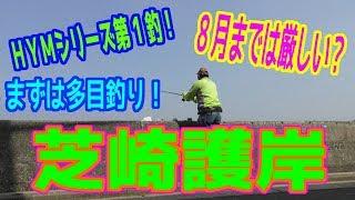 釣り動画ロマンを求めて 260釣目(芝崎護岸)