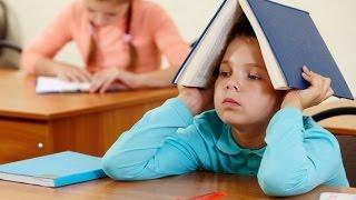 как заставить ребенка учиться на отлично - советы педагога