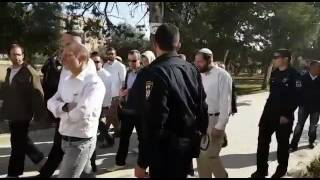بالفيديو: تصاعد كبير في اقتحامات المستوطنين للمسجد الأقصى
