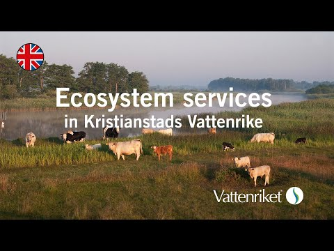 Ecosystem services in Kristianstads Vattenrike - benefiting nature and people