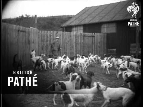 Gun Dogs (1932)