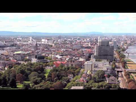 Study Abroad at DHBW Mannheim